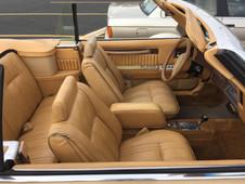 Rich Corinthian Leather