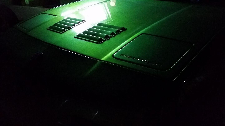 V8 Fiero Waiting For Spring