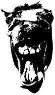Crazy Horses logo