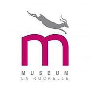 museum-histoire-naturelle-la-rochelle-14