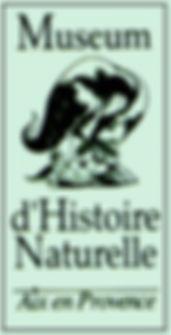 logo museum couleur.jpg