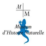 Museum-Marseille.png