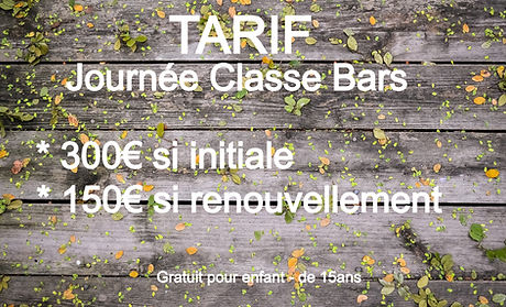 FORMATION ACCESS BARS TOULOUSE