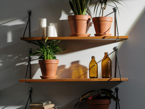 Great Ways To Decorate With Plants
