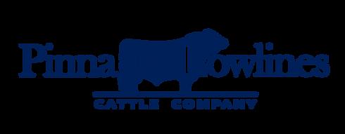 Pinnacle.Lowlines.Logo.Blue.png