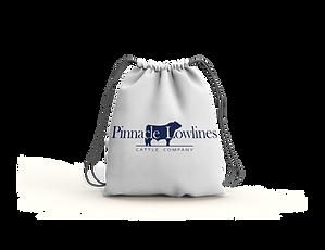 pinnacle-bag-04.png