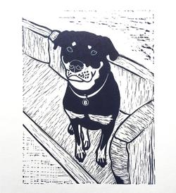 rottweiler_linoprint