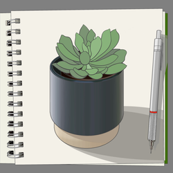 Succulent-drawing_colour
