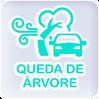 QUEDA-ARVORE-min.png