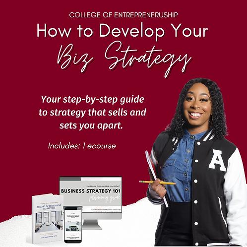 How to Develop Your Biz. Strategy-eCourse