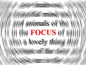 Focus – where is yours?