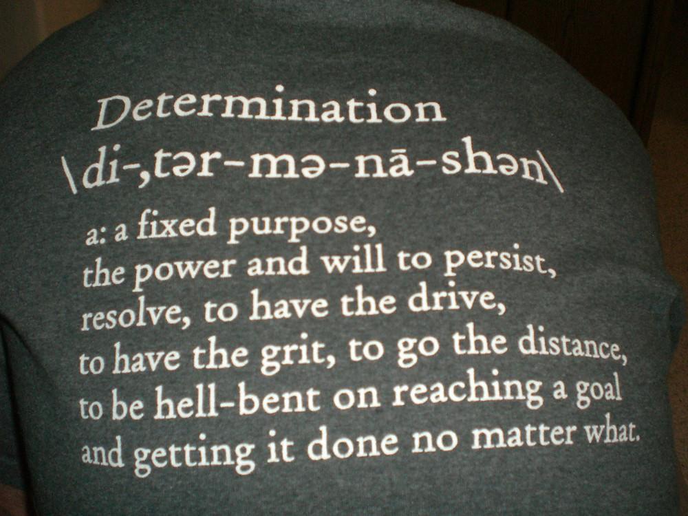 Determination definition