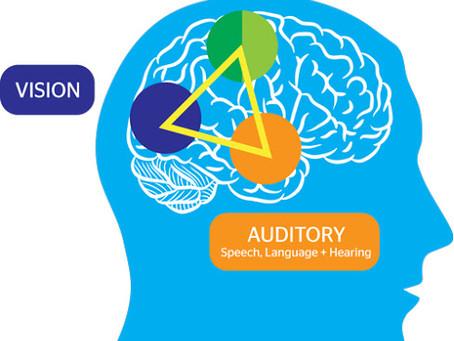 Neuroscience and Multisensory Instruction