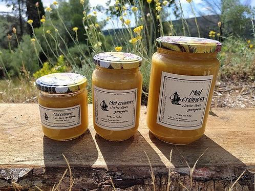 Miel crémeux (toutes-fleurs, garrigues)