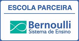 logo bernoulli.png