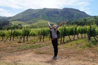 10 Top Sehenswürdigkeiten auf                    der Gardenroute, Südafrika