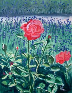 Waltham Abbey Rose Gardens