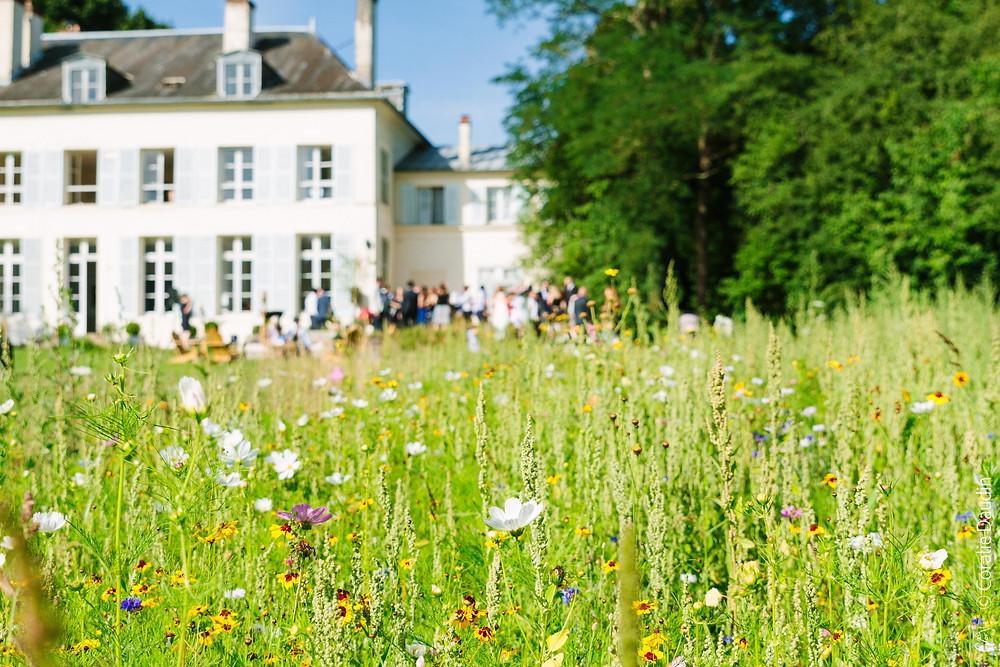Reportage photo Château de Séréville