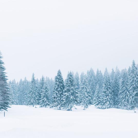 C'est de saison ! Tuto photo d'hiver by lesnumeriques.com