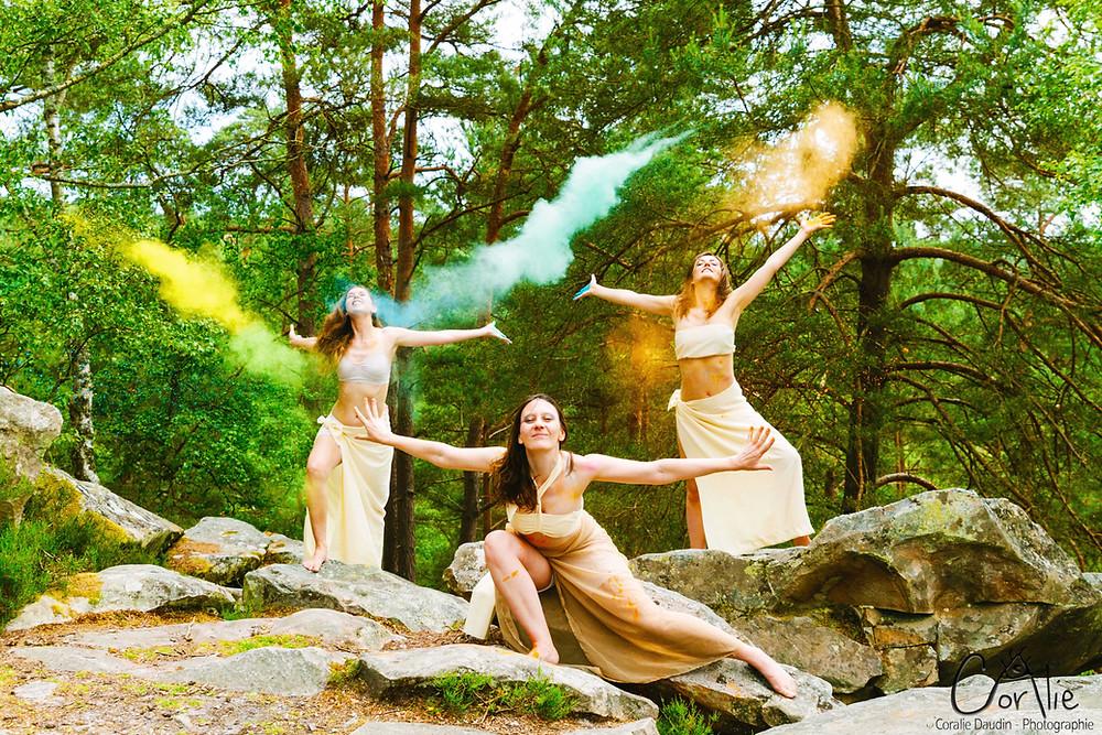 Photo pigments forêt de Rambouillet, Yvelines
