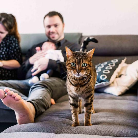 Séance photo naissance à domicile - Wissous (91)