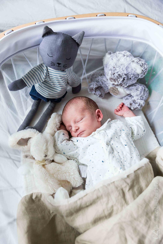 Portrait photo nouveau né