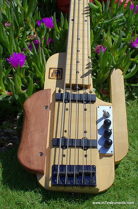 5 strings bass Fretless 2018