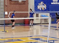 FV Badminton.jpg