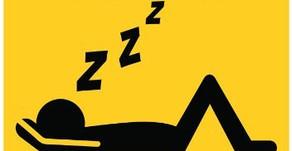 """""""Les grandes questions de l'humanité"""" #3 : Quel animal dort le plus ?"""