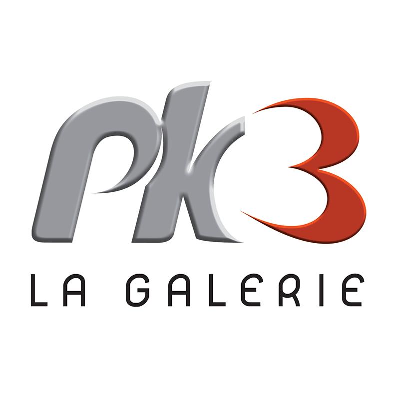 logo pk3