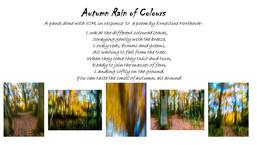 Autumn Rain of Colour V2.jpg