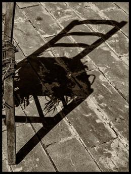 22.5x30cm - Silhouette - OLB19961e1.jpg