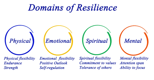 Domains of Resilience Transparent.png