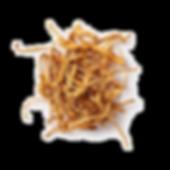Cordyceps Transparent.png