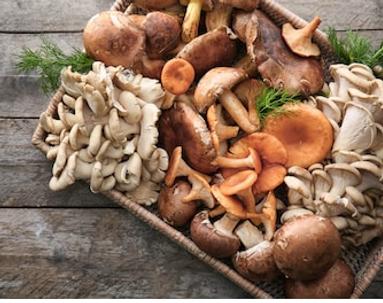 Mushroom Blend_edited.png