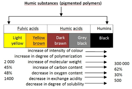 Humic Substances.png
