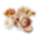 Mushroom Mix.png