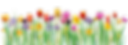 Spring Flowers Transparent.png