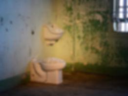 Ai Wei Wei Jingdezhen International Ceramics