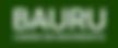 201_-BAURU_-_Cidade_em_Movimento_-_Verde