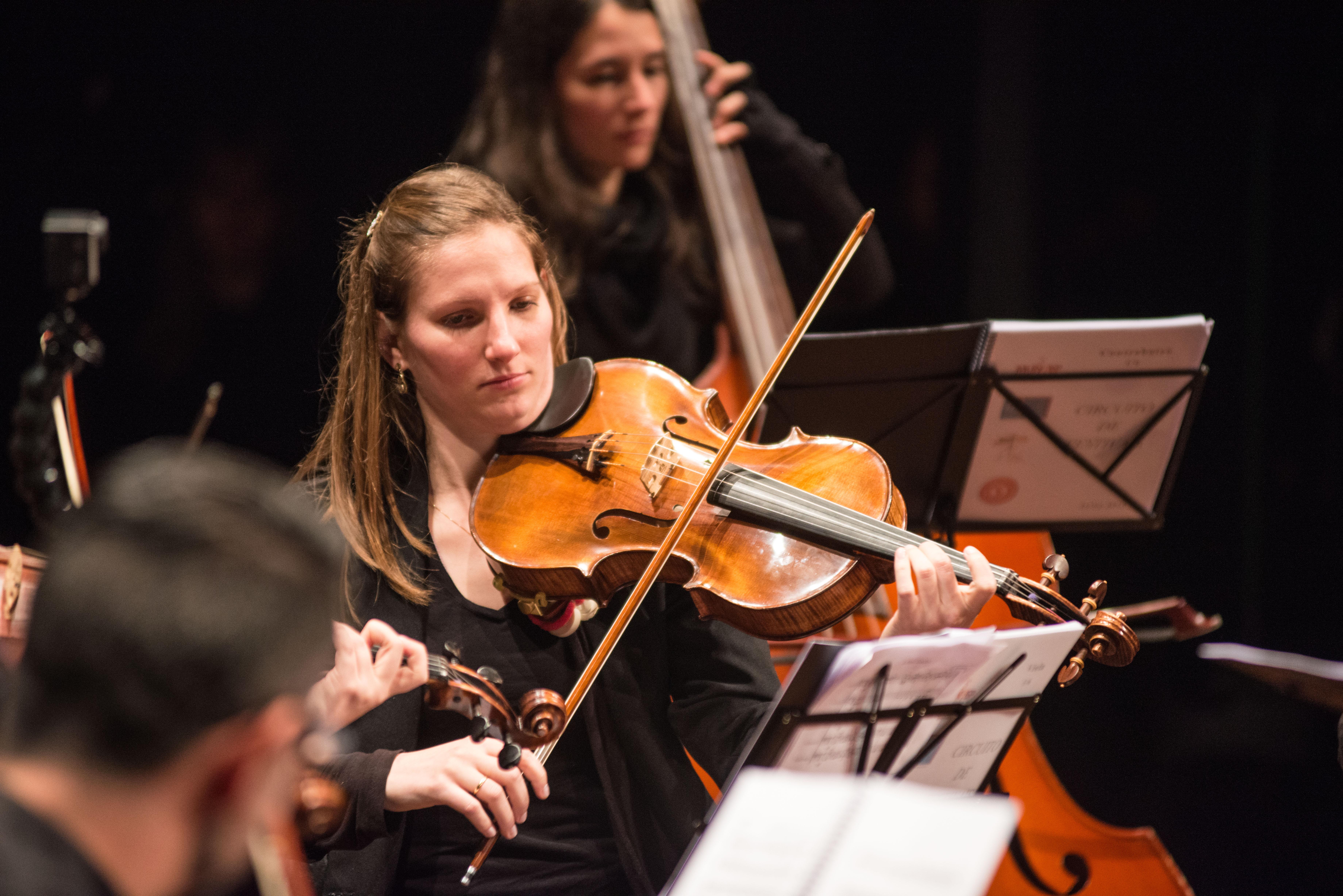 Orquestra Música na Serra