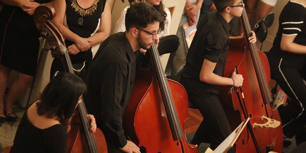 Concerto da Orquestra de Contrabaixos