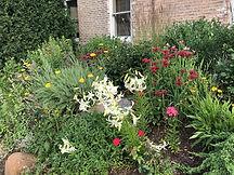 Anyioch Berm garden(1).jpg