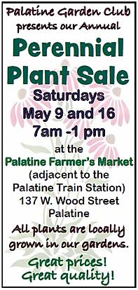 Palatine spring 2020.png