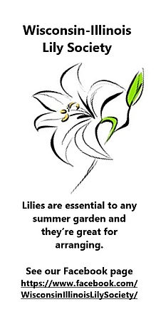 Wisconsin-Illinois Lily Society Color wi