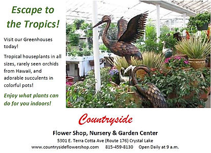 Countryside tropical ad Capture.JPG