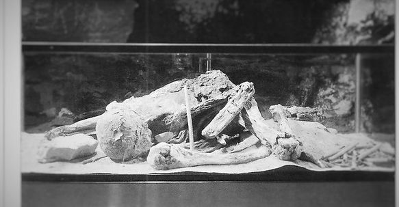 mummy, Mammoth Cave, Fawn Hoof
