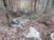 hiking, Mammoth Cave National Park, Kentucky, fall
