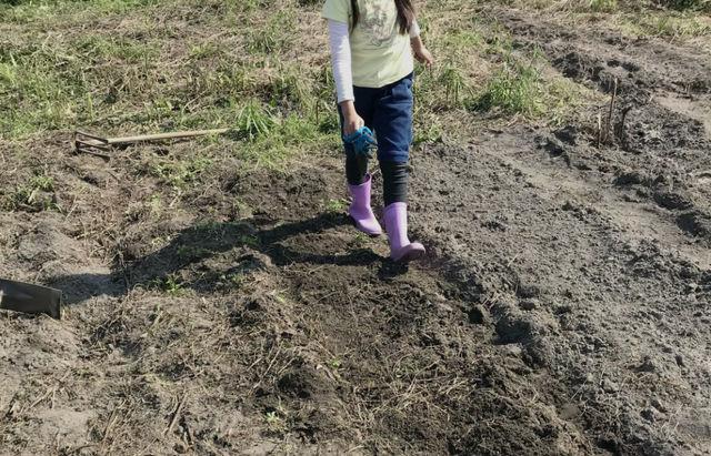 子ども達と作る自然体験プログラム