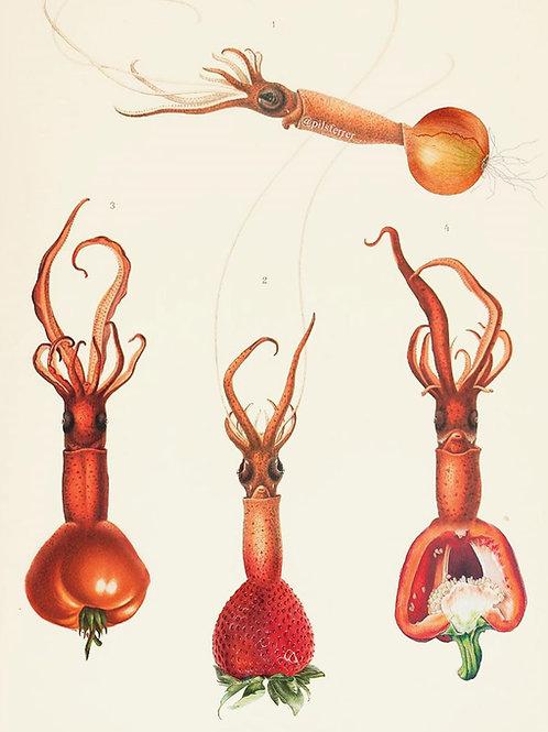 Collage de estilo surrealista de calamares con cabezas de frutas y verduras de un gazpacho